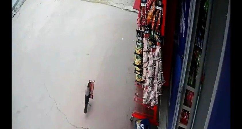 Pendik'te 'cips hırsızı' karga, iş yeri sahibine yakalandı
