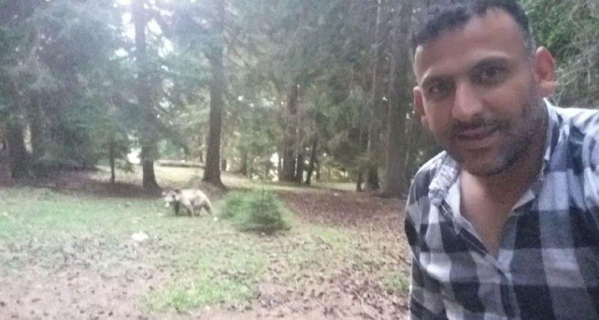 Taksi şoförü ormanda rastladığı ayı ile öz çekim yaptı sosyal medyayı salladı