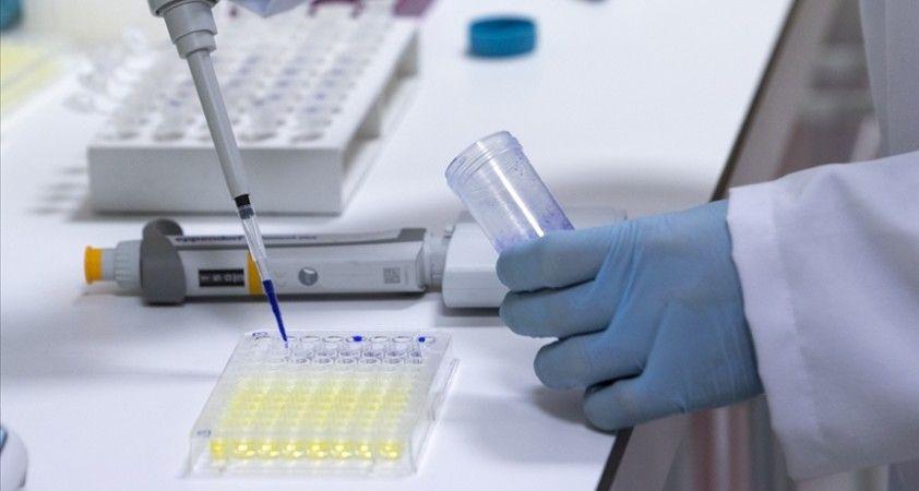 Aşı üretici firmalar, düşük ve orta gelirli ülkelere 2021 sonuna dek 1,3 milyar doz aşı temin edecek