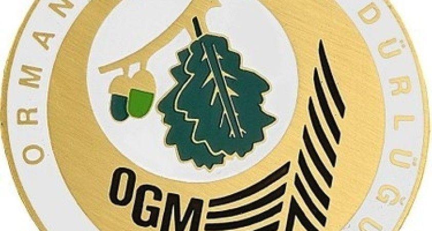 """OGM: """"Bugün çıkan 7 orman yangınının tamamını kontrol altına aldık"""""""