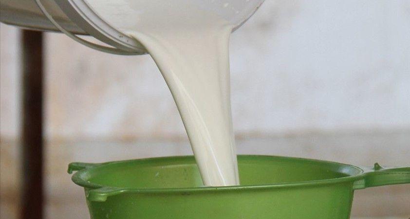 CHP'li Akın: Çiğ sütün referans fiyatı en az 3 lira olmalı