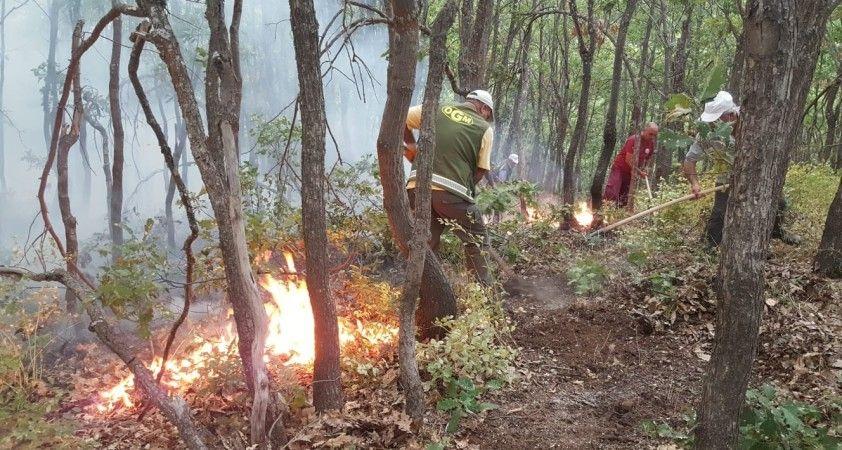 Ülke genelindeki 6 orman yangını kontrol altında