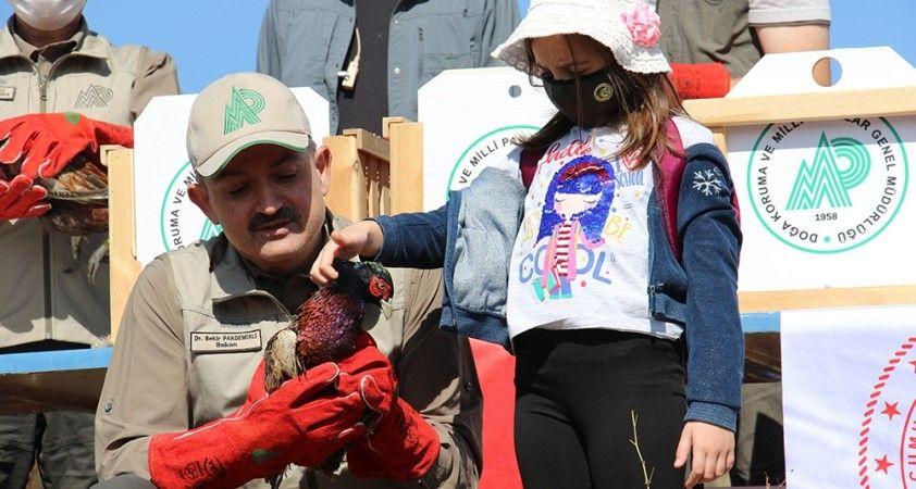 Bakan Pakdemirli Hayvanları Koruma Günü'nde yaban hayvanlarını doğa ile buluşturdu