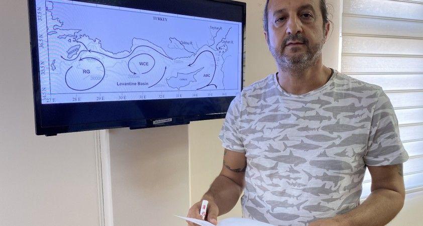 Prof. Dr. Turan: 'Petrol sızıntısı İskenderun Körfezini de tehdit edebilir'