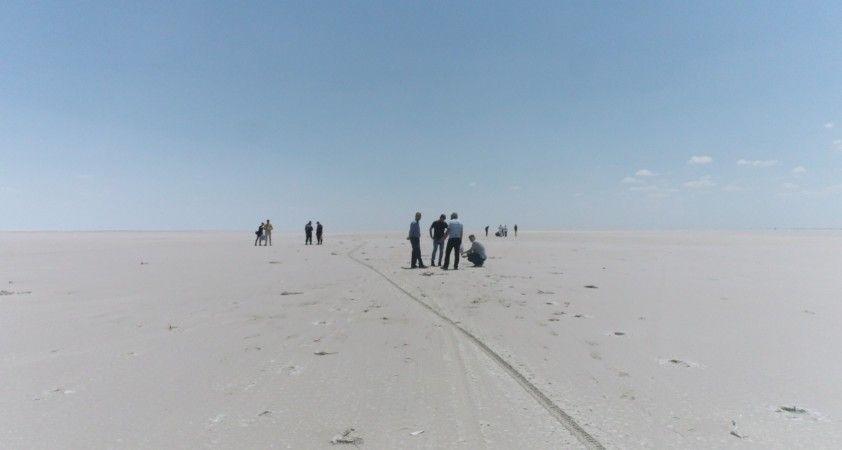 Tuz Gölü'ndeki ölü flamingolar incelemeye alındı