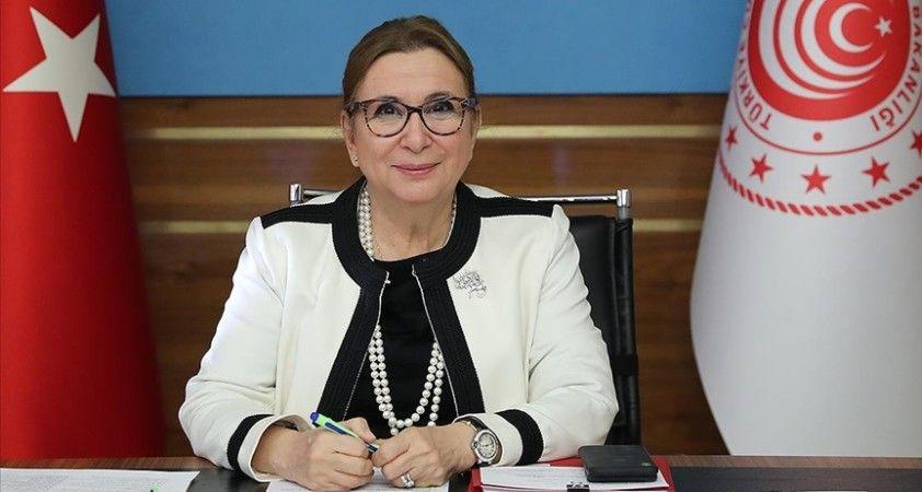 Ticaret Bakanı Pekcan: Serbest Ticaret Anlaşması ile yepyeni bir dönem başlıyor