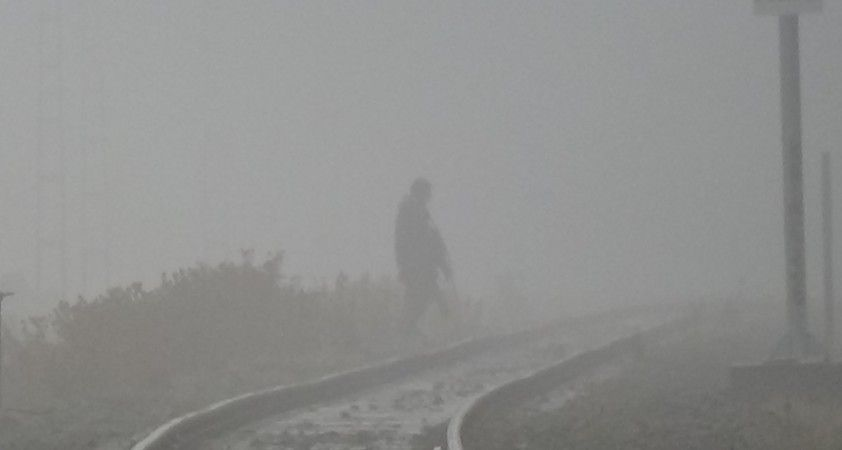 Kars'ta yoğun sis