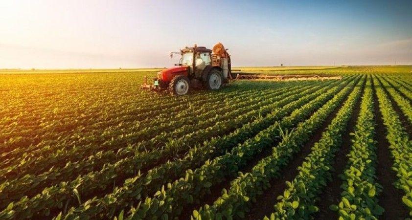 Tarım-GFE yıllık yüzde 8,11, aylık yüzde 1,43 arttı