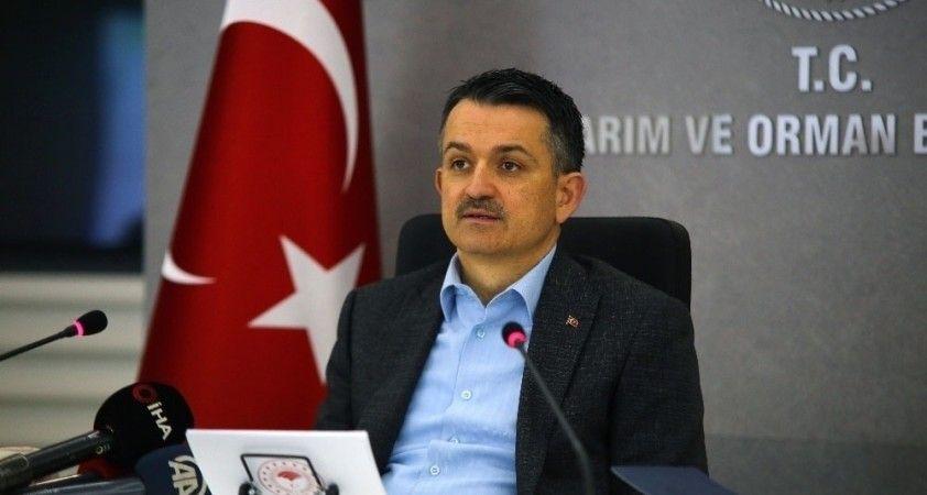 Bakan Pakdemirli, TGRT Haber'e açıklamalarda bulundu