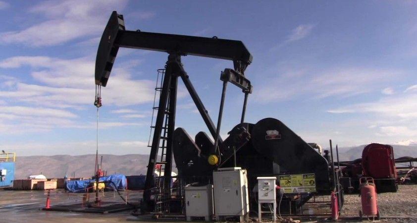TPAO Siirt'te petrol arayacak