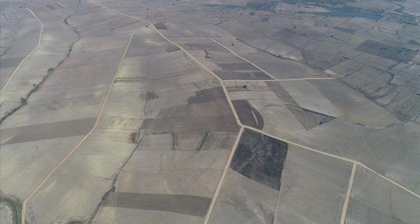 Arazi toplulaştırılması kapsamında 2022'de 100 bin hektar için düğmeye basılacak