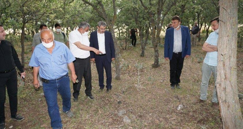 Yunanların 99 yıl önce katlettiği 83 Türk'ün mezar yerleri bulundu