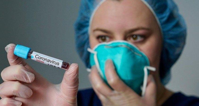 Türkiye'de son 24 saatte bin 467 kişiye koronavirüs tanısı konuldu