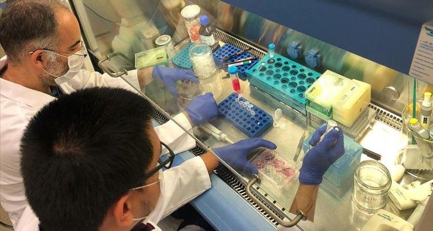 Türk bilim insanları Kovid-19'a karşı yeni nesil ilaç için çalışıyor