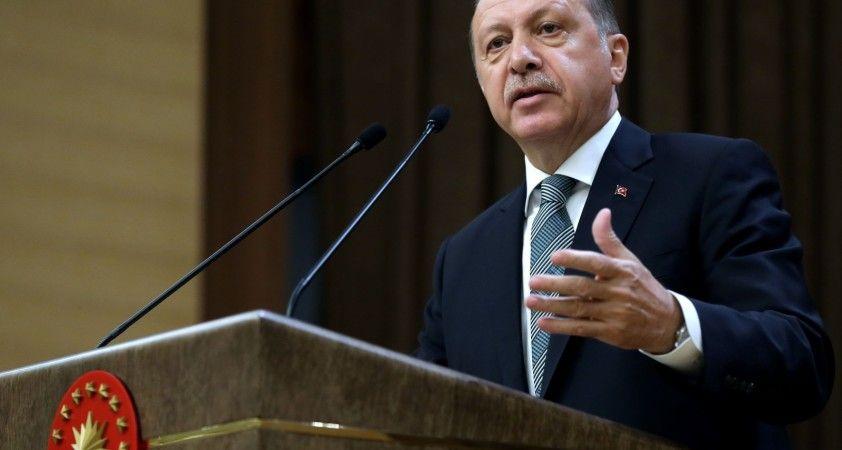Cumhurbaşkanı Erdoğan yanan alanların turizme açılacağı iddialarına yanıt verdi