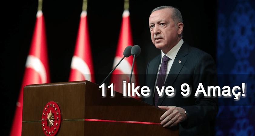Cumhurbaşkanı Erdoğan'ın İnsan Hakları Eylem Planı açıklamasının detayları: 11 ilke ve 9 amaç