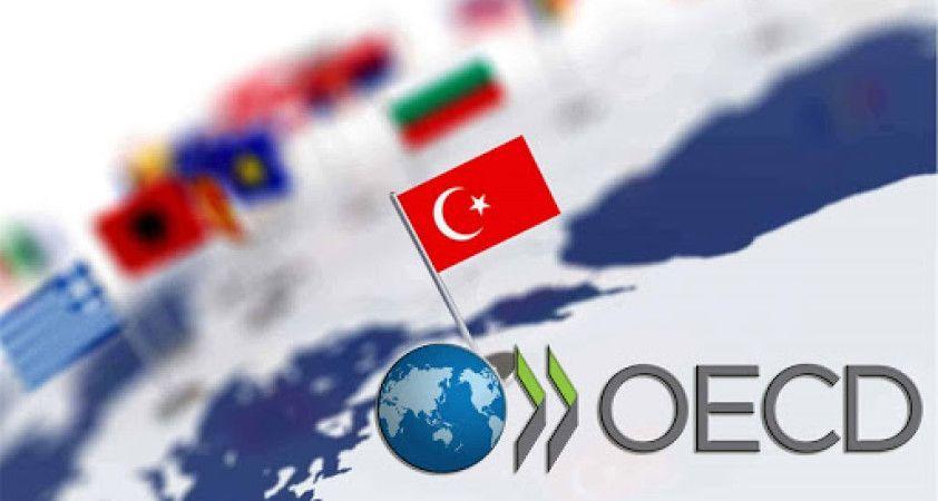 OECD göstergelerinin sürpriz atı Türkiye