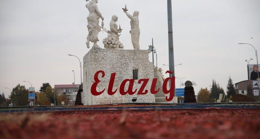 Elazığ 5 ayda 146 milyon 282 bin dolar ihracat yaptı
